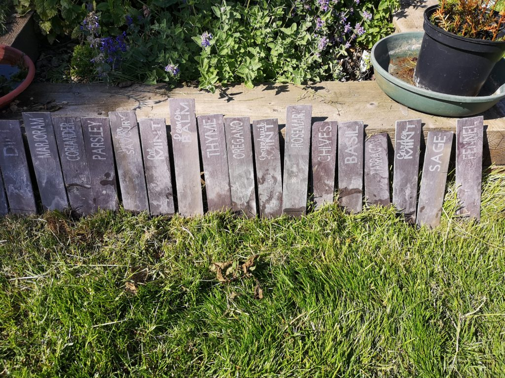 Slate etched herb markers