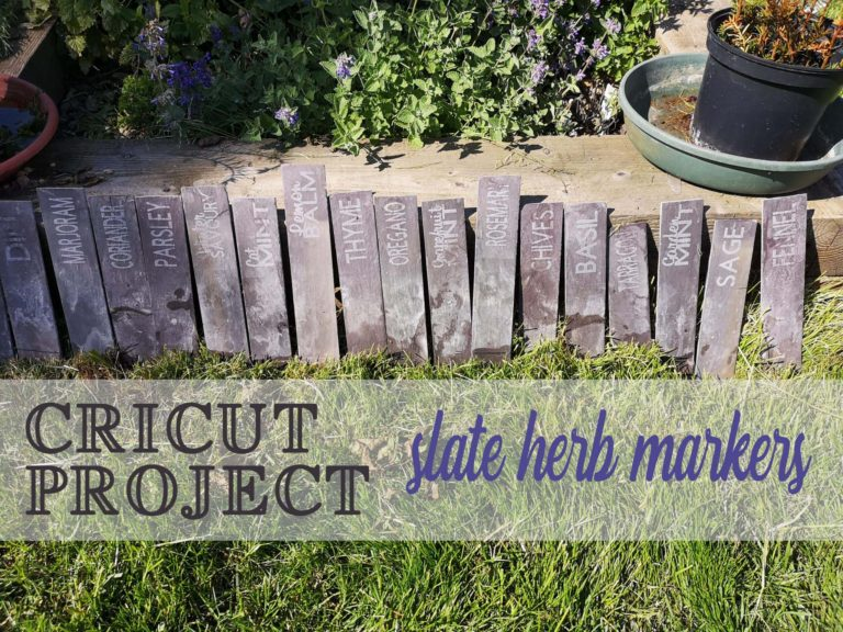 Read more about the article Garden Labels Cricut Project